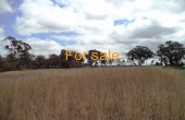LOT_1_OAKLAND_LANE_INVERELL_04