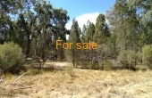 629 WEARNES RD BUNDARRA 011