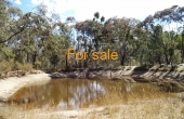 629 WEARNES RD BUNDARRA 05