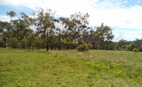 427B OLD BUNDARRA RD INVERELL 05