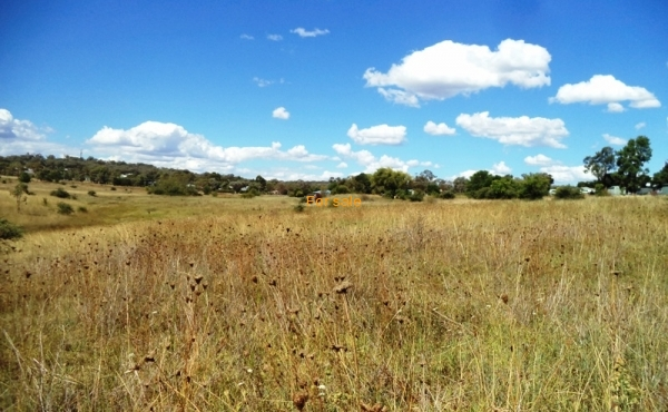 21 ACRE BLOCK INVERELL 02