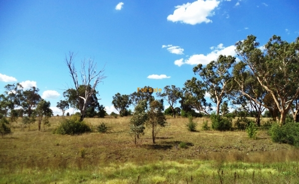 21 ACRE BLOCK INVERELL 03