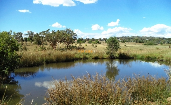 21 ACRE BLOCK INVERELL 06
