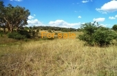 21 ACRE BLOCK INVERELL 08