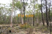 LOT 16 MICHAELS LANE WARIALDA 010