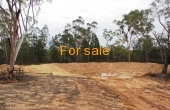LOT 16 MICHAELS LANE WARIALDA 02