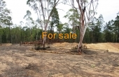 LOT 16 MICHAELS LANE WARIALDA 03