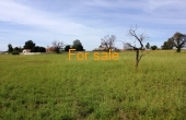 LOT 7 OAKLAND LANE INVERELL (3)