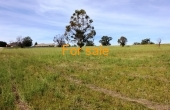 LOT 7 OAKLAND LANE INVERELL (4)