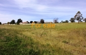 LOT 8 OAKLAND LANE INVERELL (4)