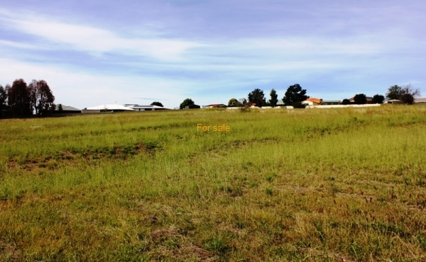 LOT 9 OAKLAND LANE INVERELL (4)