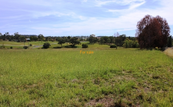 LOT 10 OAKLAND LANE INVERELL (5)