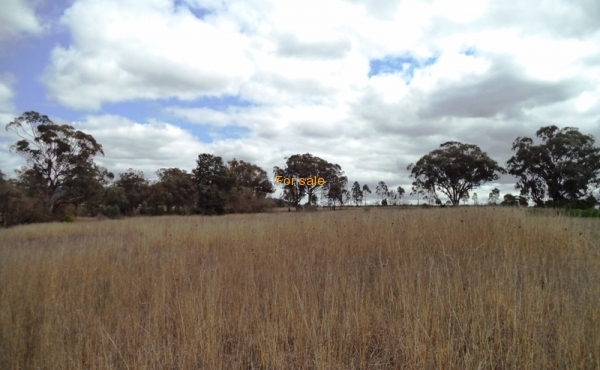 LOT 1 OAKLAND LANE INVERELL 04