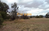 10_OAKLAND_LANE_INVERELL_012