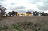 LOT 1 OAKLAND LANE INVERELL 02