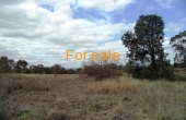 Lot 1 Oakland Lane Inverell