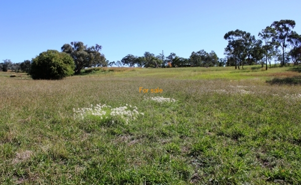 LOT 13 OAKLAND LANE INVERELL (5)