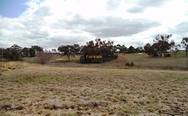 LOT_12_OAKLAND_LANE_INVERELL_01