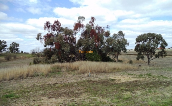 LOT_12_OAKLAND_LANE_INVERELL_02