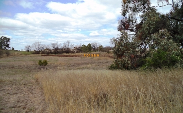 LOT_12_OAKLAND_LANE_INVERELL_03