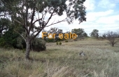 LOT_12_OAKLAND_LANE_INVERELL_04