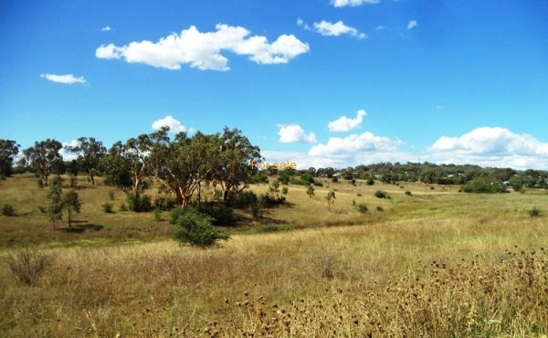 21 ACRE BLOCK INVERELL 07