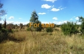 21 ACRE BLOCK INVERELL 04