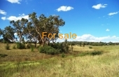 21 ACRE BLOCK INVERELL 09