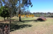 49 RUNNYMEDE DR INVERELL 06