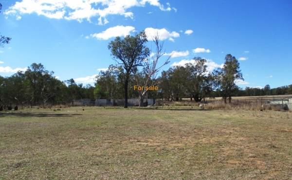100 MELROSE ESTATE RD WARIALDA 029