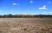 100 MELROSE ESTATE RD WARIALDA 037